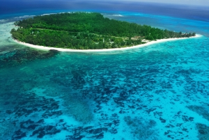 Denis Island coral reefs - Diving in the Seychelles