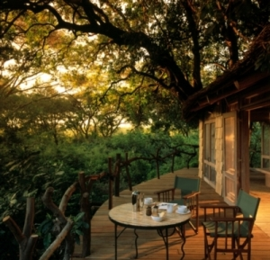 Lake Manyara Tree Lodge - Tree House deck