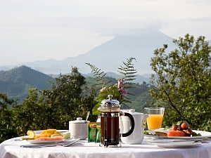 Breakfast in the Clouds at Clouds Mountain Gorilla Lodge