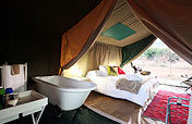 Conference accommodation in the bush