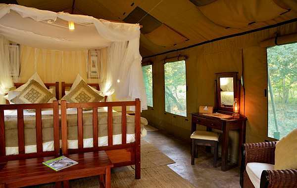 Elephant Valley Lodge - Forest Tent