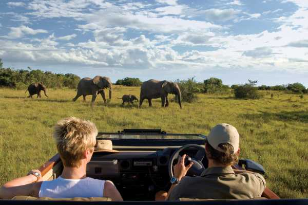 Kichaka Lodge safari