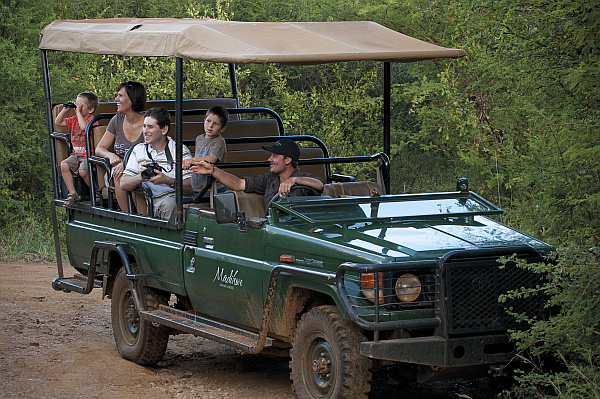 Madikwe Safari Lodge family on safari
