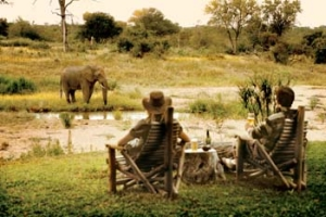 Motswari Private Game Reserve - Camp