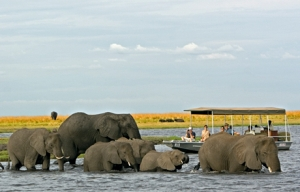 Chobe Chilwero - water activities