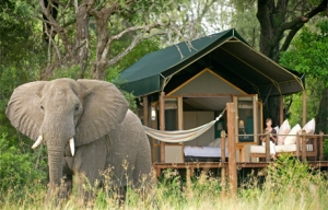 Stanley's Camp tented safari accommodation